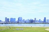 大阪府 淀川河川敷の芝生とビル群