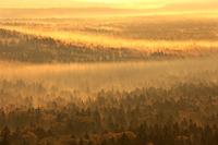 北海道 三国峠から朝霧の森
