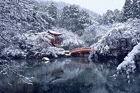 京都府 醍醐寺 雪景色