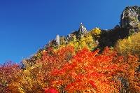 北海道 層雲峡の紅葉