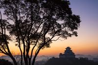 兵庫県 朝の姫路城