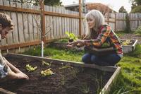 庭で家庭菜園を楽しむ外国人