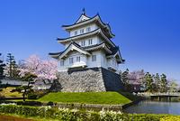 桜咲く忍城