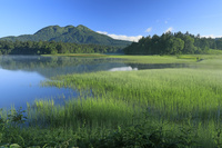 福島県 尾瀬沼と燧ヶ岳