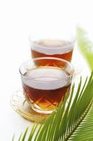 ガラス器の麦茶と蘇鉄の新芽