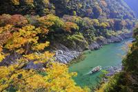 徳島県 紅葉の大歩危峡と観光遊覧船 吉野川