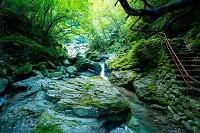 高知県 安居渓谷 飛龍の滝への道