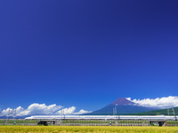 静岡県 富士山と新幹線