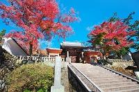 静岡県 修善寺温泉 修禅寺