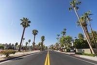 アメリカ合衆国 カリフォルニア パームスプリングス