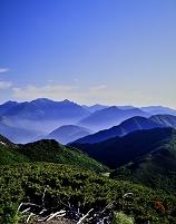 長野県 ハイマツと山並みと北アルプス