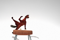 鞍馬で演技する馬