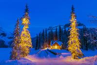 カナダ ヨーホー国立公園 エメラルドレイクのクリスマスツリー