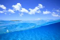 沖縄県 黒島の水中