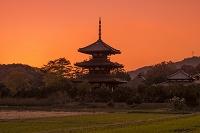 奈良県 斑鳩町 法起寺