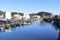 神奈川県 横須賀市 夫婦橋から見る平作川