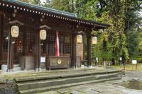 福島県 伊佐須美神社の藤