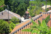 沖縄県 竹富島 赤瓦集落と水牛車