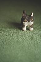 ハチワレ猫の置物