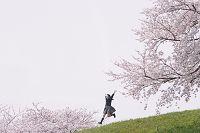 桜と女子高校生