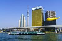 東京都 水上バスと東京スカイツリー