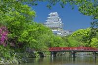 兵庫県 姫路城と橋