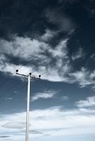 アイスランド 送電線
