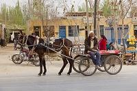 中国 新疆ウイグル自治区 ロバ車