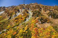 紅葉の立山黒部アルペンルート大観峰と立山連峰