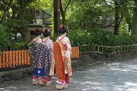京都府 祇園白川南通 体験舞妓