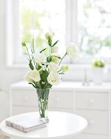 花瓶に生けられた白色の花