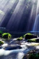 熊本県 光と渓流 鍋ヶ滝