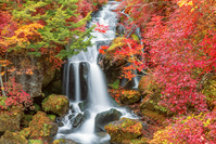 栃木県 紅葉の竜頭滝 日光