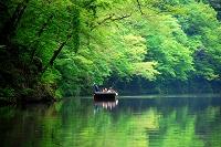 岩手県 一関市 猊鼻渓の舟下りと新緑の森