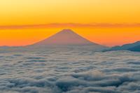 長野県 朝日に照らされる富士山と雲海