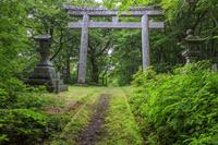 鳥取県 大山道 石の大鳥居