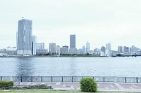 東京都 豊洲公園から望む晴海方面ビル群