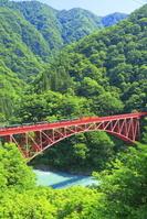 富山県 新緑のトロッコ列車