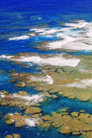 鹿児島県 明神崎展望台よりサンゴ礁の海 奄美大島