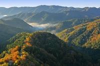滋賀県 小入峠と雲海