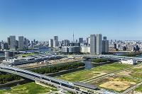 東京都 豊洲市場建設現場と豊洲、晴海周辺のビル群