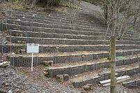 大谷崩 (日本三大崩れ) 補強・植林された斜面