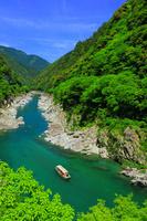 徳島県 吉野川 大歩危峡