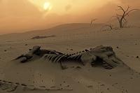 砂に埋める恐竜の残骸 CG