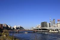 ホタルナと両国橋 東京スカイツリー