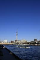 ホタルナと蔵前橋 東京スカイツリー