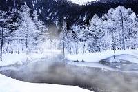 長野県 田代池の霧氷
