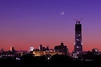 東京都 月とスカイツリーの夜景