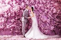 ピンクの花の壁の前でキスする新郎新婦