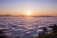 北海道 雲海の津別峠